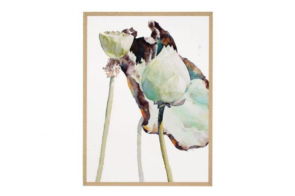 Peppermint Lotus